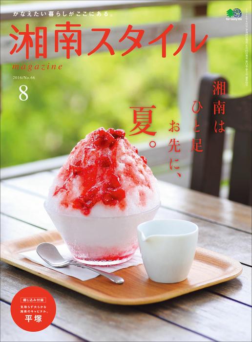 湘南スタイルmagazine 2016年8月号 第66号拡大写真