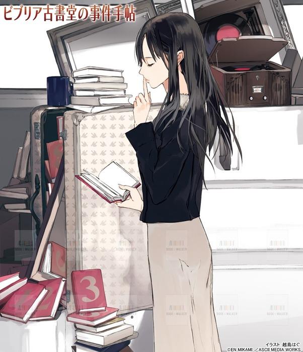 【12冊収納】『ビブリア古書堂の事件手帖 2 ~栞子さんと謎めく日常~』 購入特典本棚デザイン拡大写真