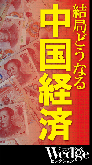 結局どうなる 中国経済 (Wedgeセレクション No.48)拡大写真