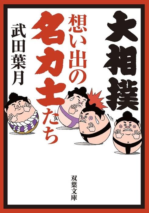 大相撲 想い出の名力士たち拡大写真