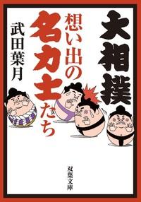 大相撲 想い出の名力士たち-電子書籍