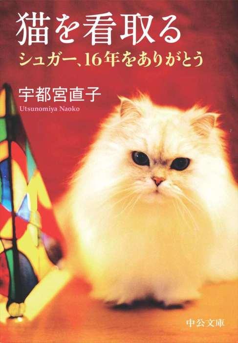 猫を看取る シュガー、16年をありがとう拡大写真