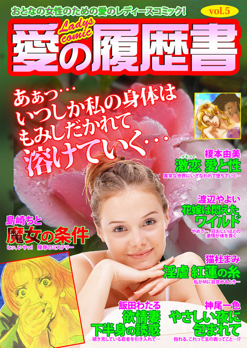 愛の履歴書Vol.5拡大写真