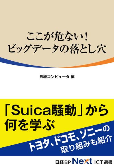 ここが危ない! ビッグデータの落とし穴(日経BP Next ICT選書)-電子書籍