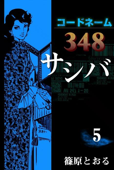 コードネーム348 サシバ (5)拡大写真