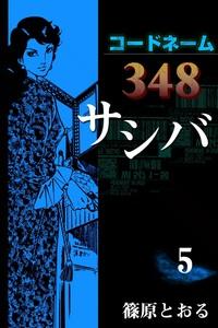 コードネーム348 サシバ (5)