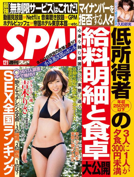 週刊SPA! 2015/12/1号拡大写真