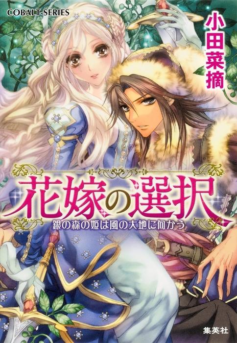 花嫁の選択1 銀の森の姫は風の大地に向かう拡大写真