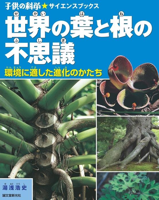 世界の葉と根の不思議拡大写真