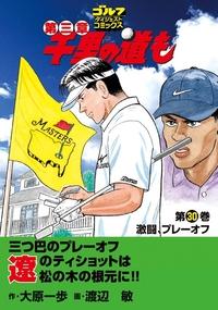 千里の道も 第三章(30) 激闘、プレーオフ-電子書籍