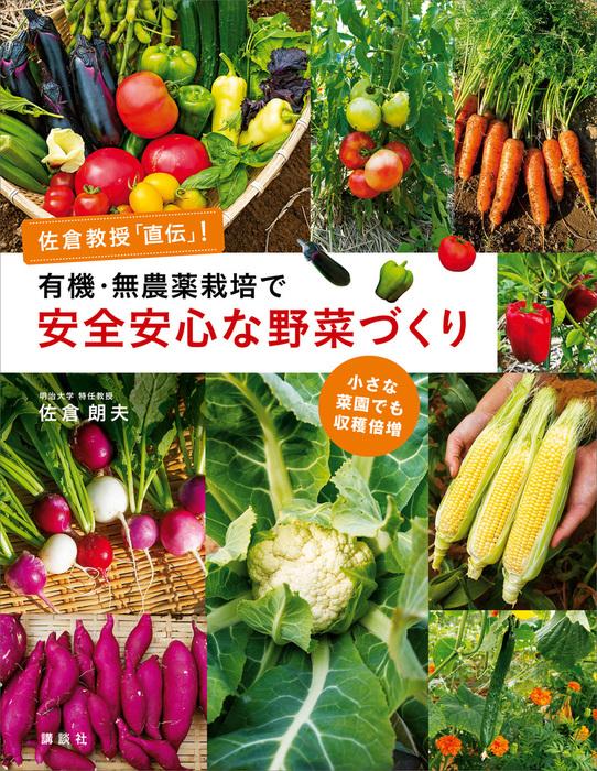 有機・無農薬栽培で安全安心な野菜づくり 佐倉教授「直伝」! 小さな菜園でも収穫倍増拡大写真