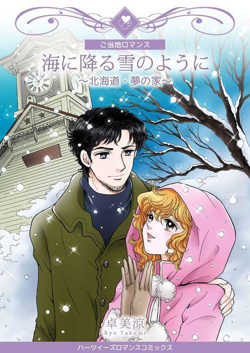 海に降る雪のように~北海道・夢の家~拡大写真