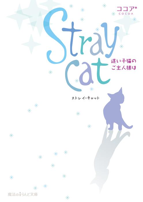 Stray cat 迷い子猫のご主人様は拡大写真