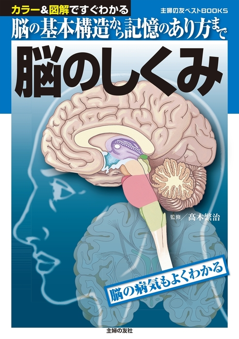 脳のしくみ-電子書籍-拡大画像