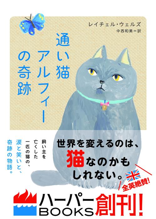 通い猫アルフィーの奇跡拡大写真