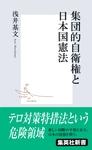 集団的自衛権と日本国憲法-電子書籍