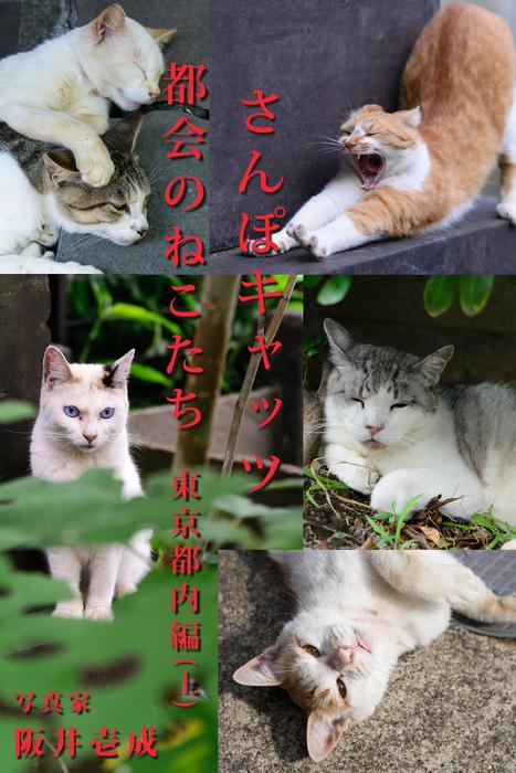 さんぽキャッツ 都会のねこたち 東京都内編(上)拡大写真