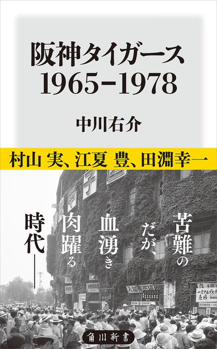 阪神タイガース 1965-1978拡大写真
