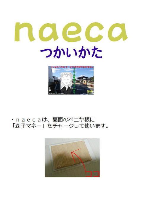naeca使い方-電子書籍-拡大画像