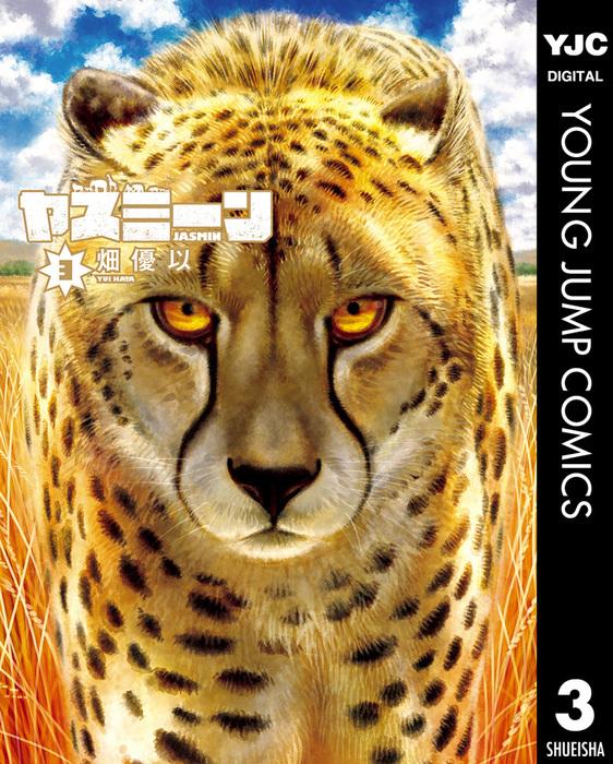 ヤスミーン 3-電子書籍-拡大画像