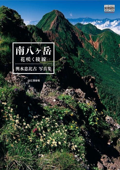 輿水忠比古写真集 南八ヶ岳 花咲く稜線拡大写真