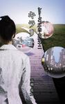 シリーズ二十四人の女 十二 キラリ-電子書籍