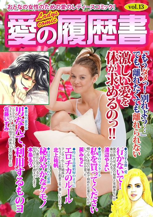 愛の履歴書Vol.13-電子書籍-拡大画像