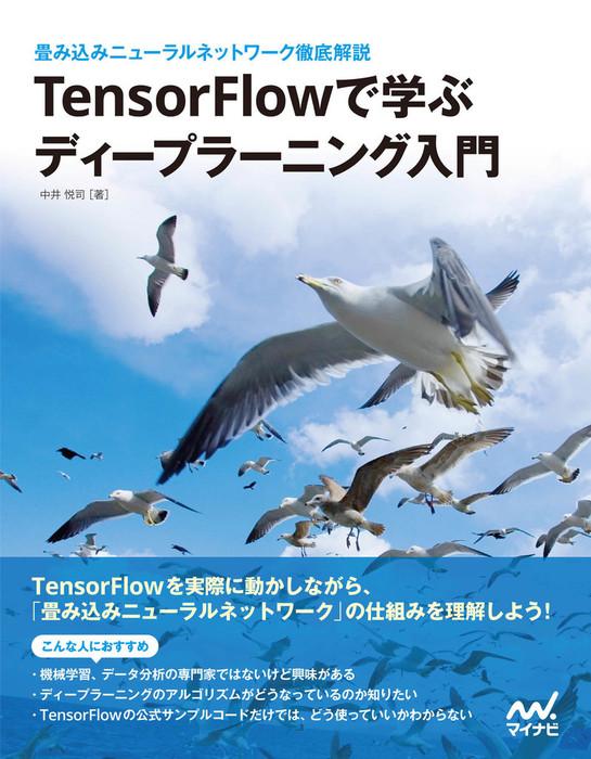 TensorFlowで学ぶディープラーニング入門 ~畳み込みニューラルネットワーク徹底解説拡大写真
