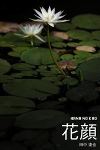 花顔 HANA NO KAO-電子書籍