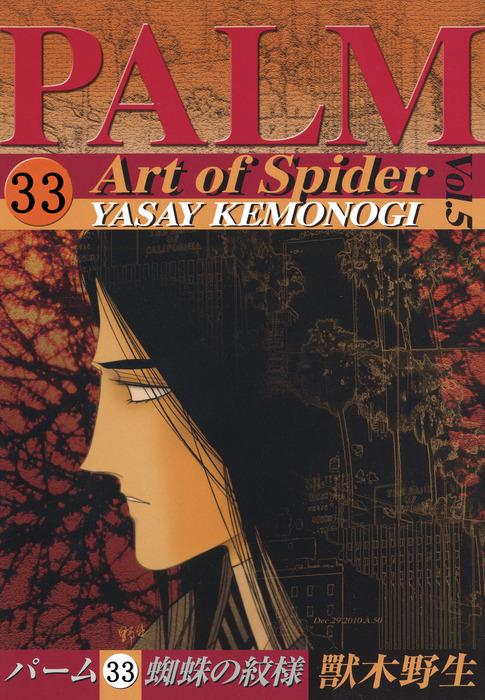 パーム (33) 蜘蛛の紋様 V拡大写真