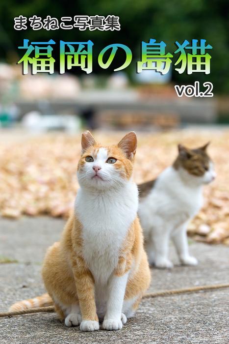まちねこ写真集・福岡の島猫 vol.2拡大写真
