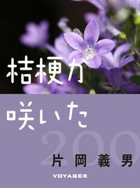 桔梗が咲いた-電子書籍