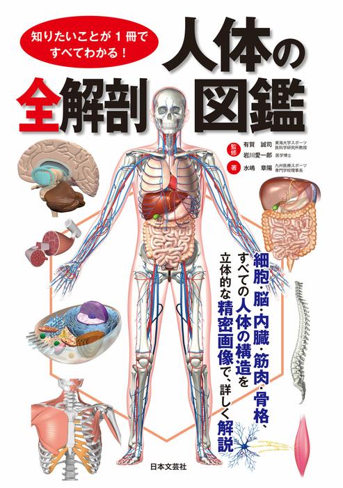 知りたいことが1冊ですべてわかる! 人体の全解剖図鑑拡大写真