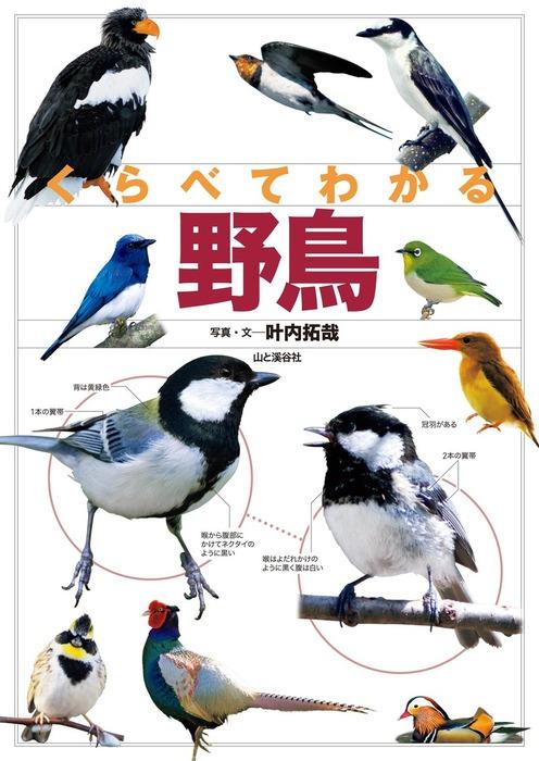 くらべてわかる 野鳥-電子書籍-拡大画像