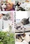 もふもふ猫まみれ とよたさんちのマブ猫 22のハッピールール-電子書籍