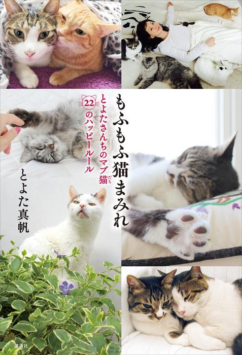 もふもふ猫まみれ とよたさんちのマブ猫 22のハッピールール拡大写真