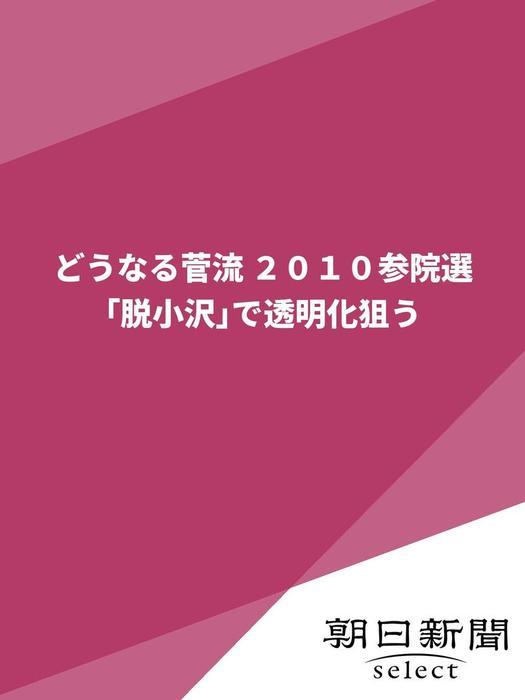 どうなる菅流 2010参院選 「脱小沢」で透明化狙う拡大写真