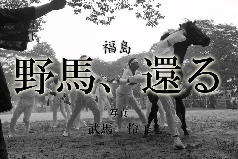 野馬、還る ~福島~拡大写真