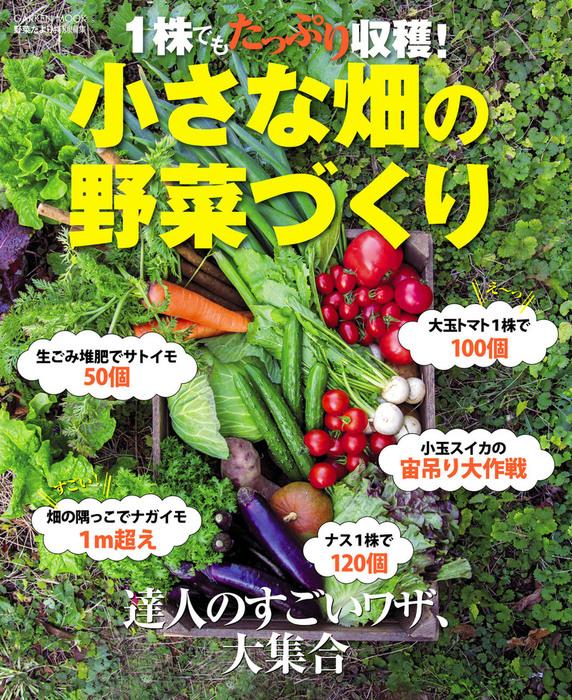 1株でもたっぷり収穫! 小さな畑の野菜づくり拡大写真