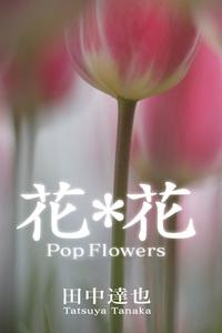 花*花-電子書籍