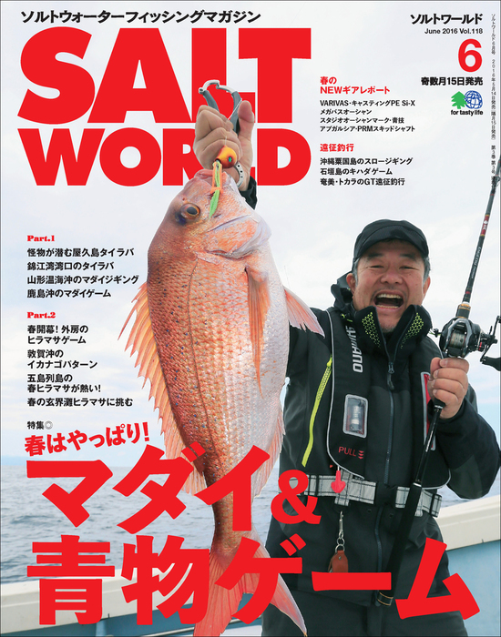 SALT WORLD 2016年6月号 Vol.118拡大写真