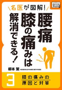 名医が図解! 腰痛・膝の痛みは解消できる! (3) 膝の痛みの原因と対策
