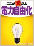ここが変だよ電力自由化-電子書籍