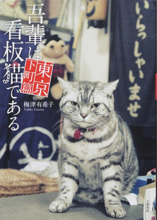 吾輩は看板猫である 東京下町篇拡大写真