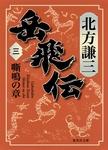 岳飛伝 三 嘶鳴の章-電子書籍