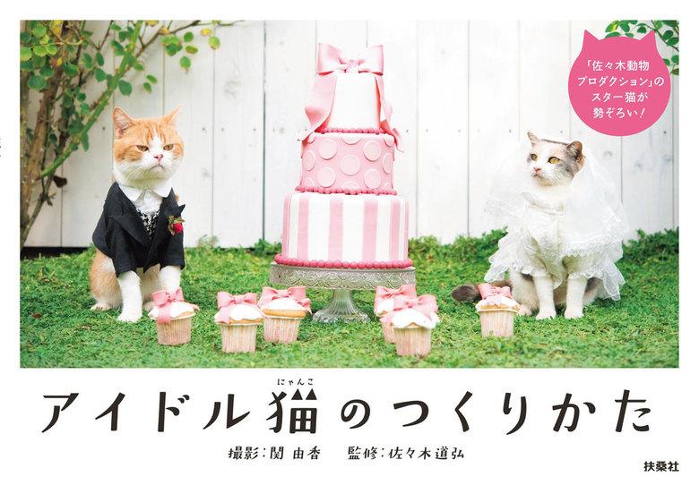 アイドル猫のつくりかた拡大写真