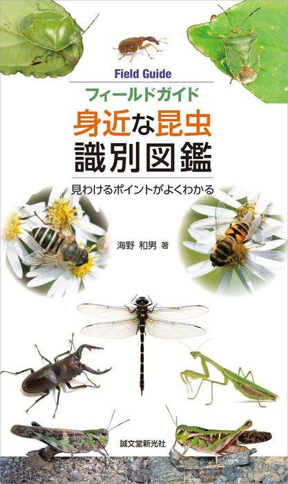 フィールドガイド 身近な昆虫識別図鑑拡大写真