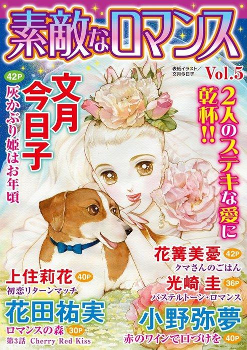 素敵なロマンス Vol.5拡大写真