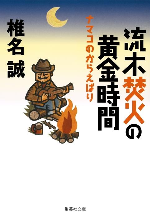 流木焚火の黄金時間 ナマコのからえばり拡大写真
