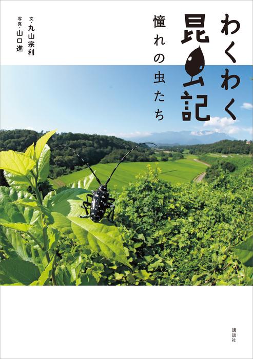 わくわく昆虫記 憧れの虫たち-電子書籍-拡大画像